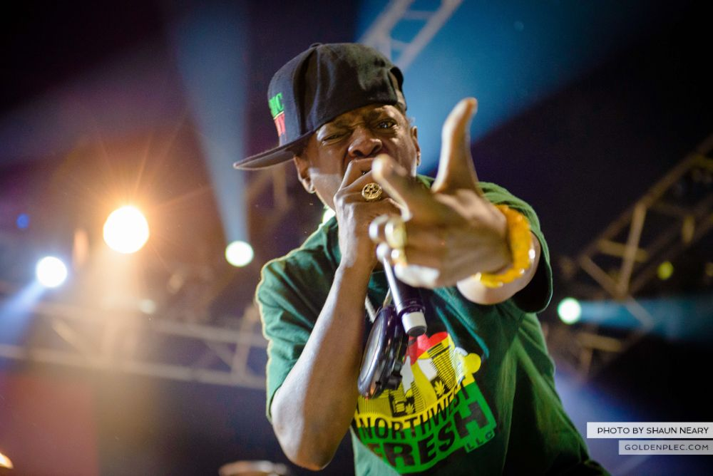 Public Enemy at Forbidden Fruit, IMMA, Dublin on June 1st 2014 by Shaun Neary-7