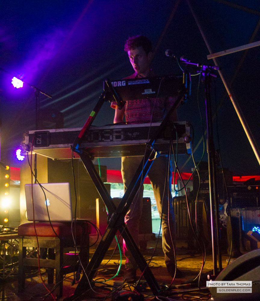 Sounds of the System Breakdown at Castlepalooza by Tara Thomas