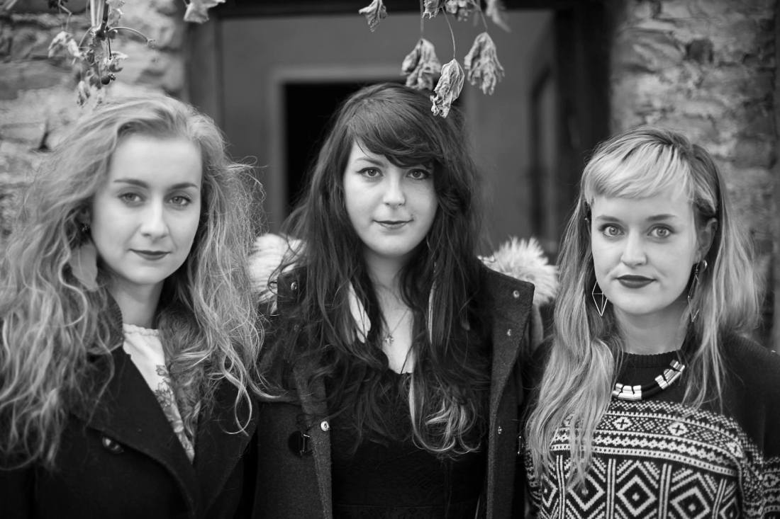 Wyvern Lingo Other voices 2014