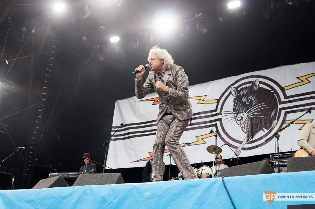 The Boomtown Rats at Electric Picnic 2015 by Owen Humphreys (1 of 5)