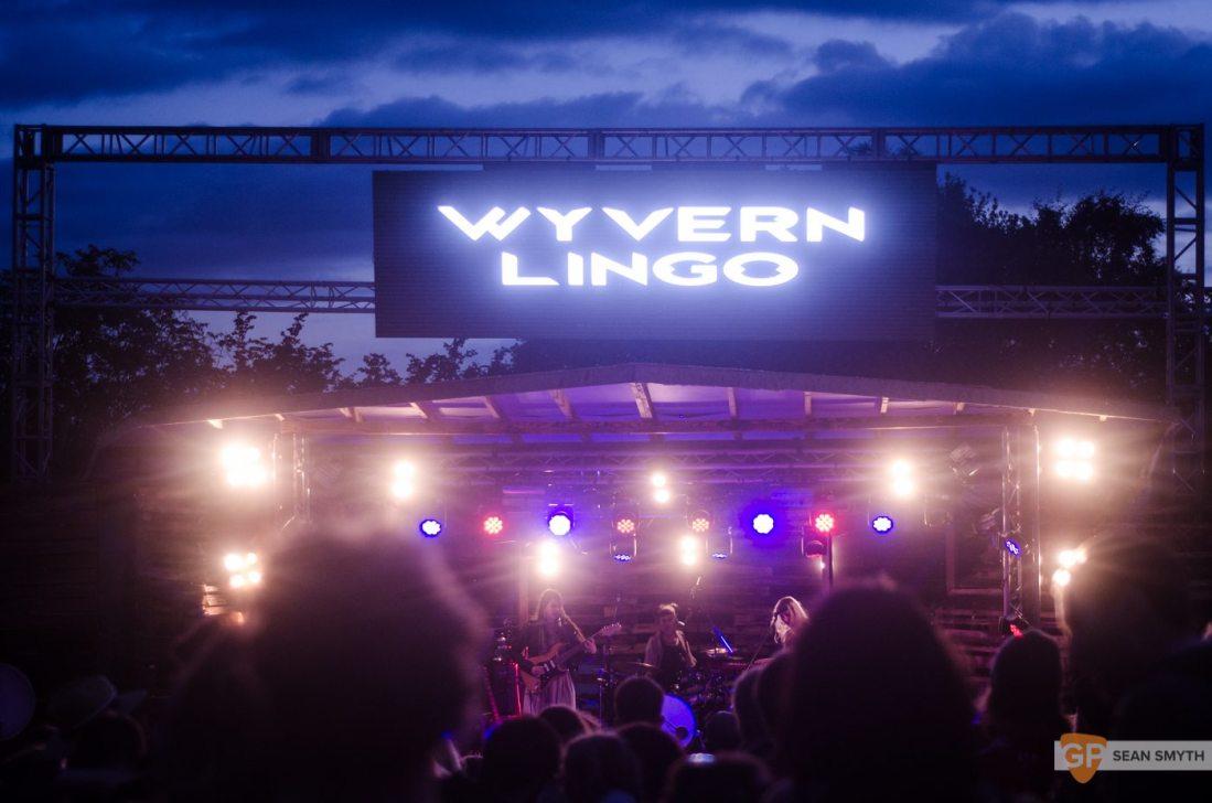 Wyvern Lingo at Knockanstockan by Sean Smyth (23-7-16) (1 of 3)