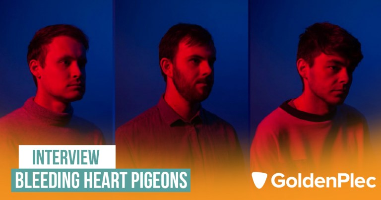Photo of Bleeding Heart Pigeons – Interview