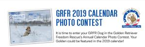 2019 GRFR Calendar Contest
