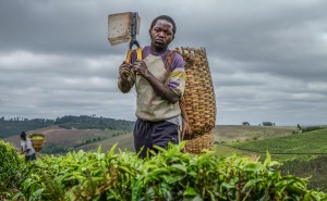 10 Reasons Why You Should Study Agric Science