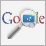 Search Engine Rank