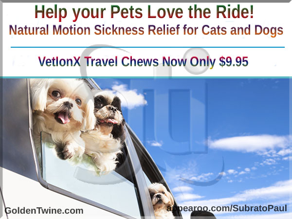 Natural Motion Sickness Relief for Cats and Dogs