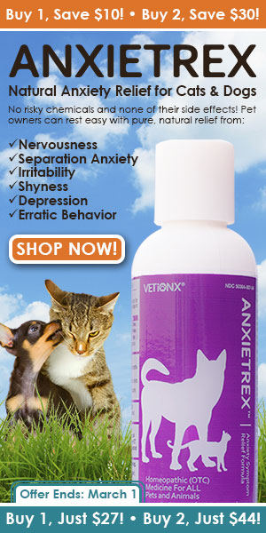 Natural Anxiety Relief for Cats & Dogs!