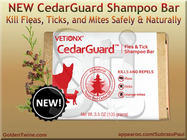 CedarGuard Shampoo Bar
