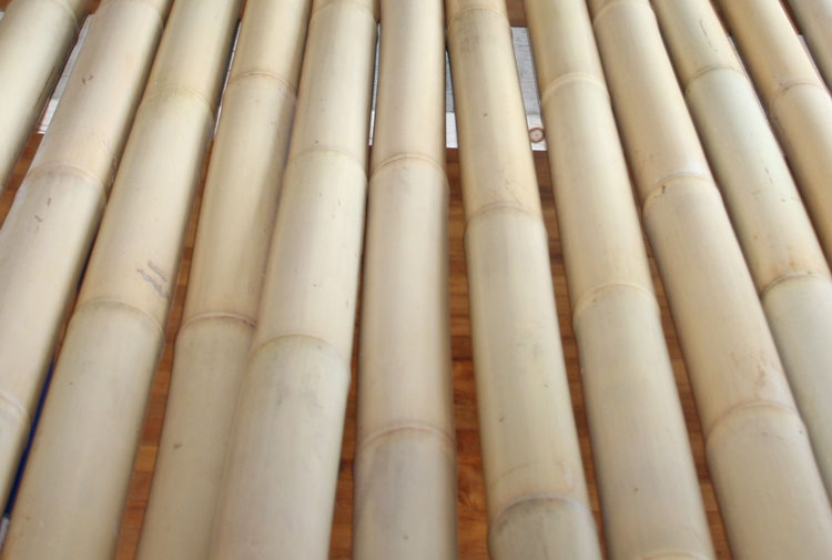 A+ Bamboo