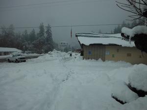 12-20-12 snow storm my house 028