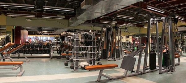 golds gym locations san antonio | anotherhackedlife.com