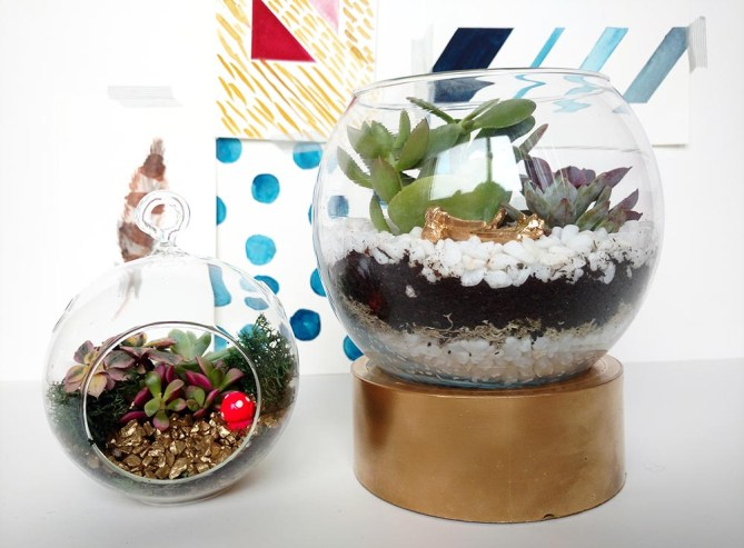 DIY Terrarium 3 Ways - Gold Standard Workshop