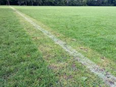 footbal-pitch-lines-02