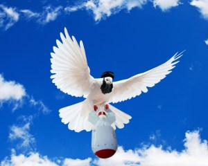 Vredesduif2_islam2