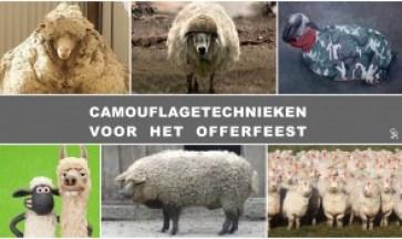 offerfeest schapen camouflage