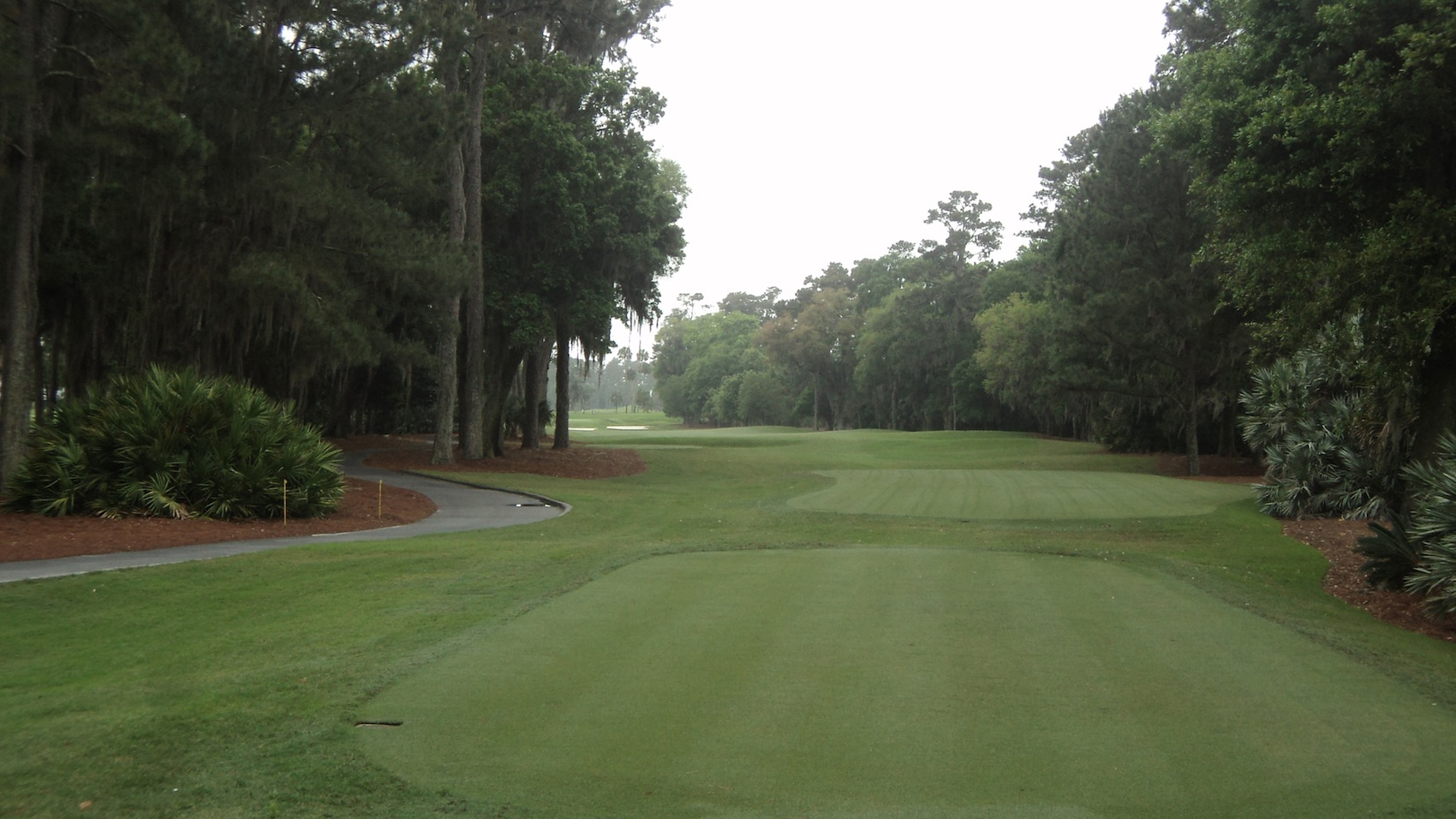 Image result for hole 2 tpc sawgrass