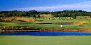 golfbaan 1