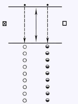 Эстафета с мячом - спортивная игра (описание, правила ...