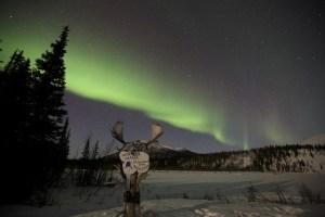 The Aurora & Alaskan Culture