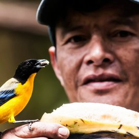 Making new friends in the Amazon basin