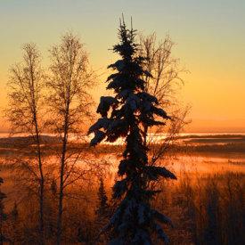 Sunsets Outside Fairbanks Create Beautiful Silhouettes