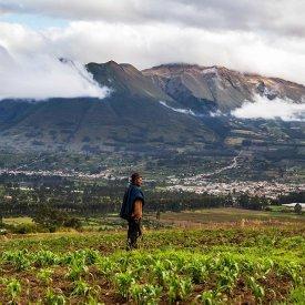 The Highlands of Ecuador