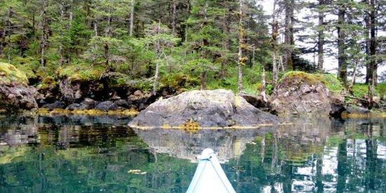 Kayaking in the Kenai Peninsula