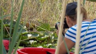 Câteva dintre minunile ce pot fi descoperite în Delta Dunării. FOTO Safari Delta Club