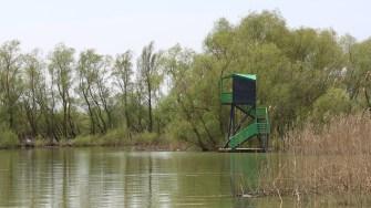 Foișor de observare a păsărilor în Delta Dunării. FOTO Adrian Boioglu