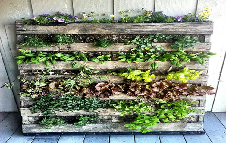 Easy Vegetable Gardening With Pallets 14