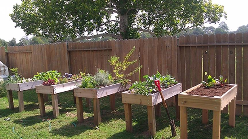 Easy Vegetable Gardening With Pallets 17