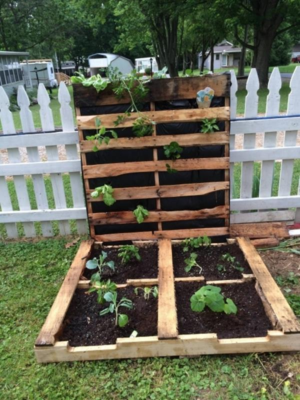 Easy Vegetable Gardening With Pallets 19