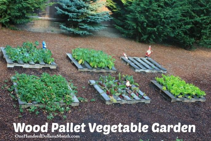 Easy Vegetable Gardening With Pallets 24
