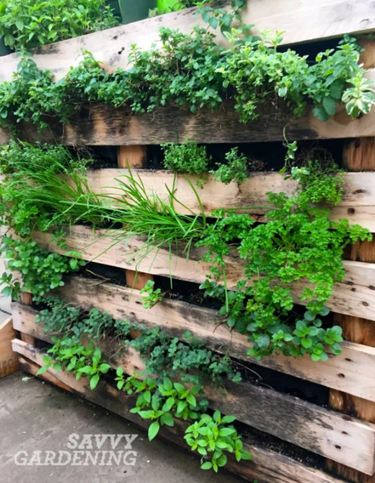 Easy Vegetable Gardening With Pallets 25
