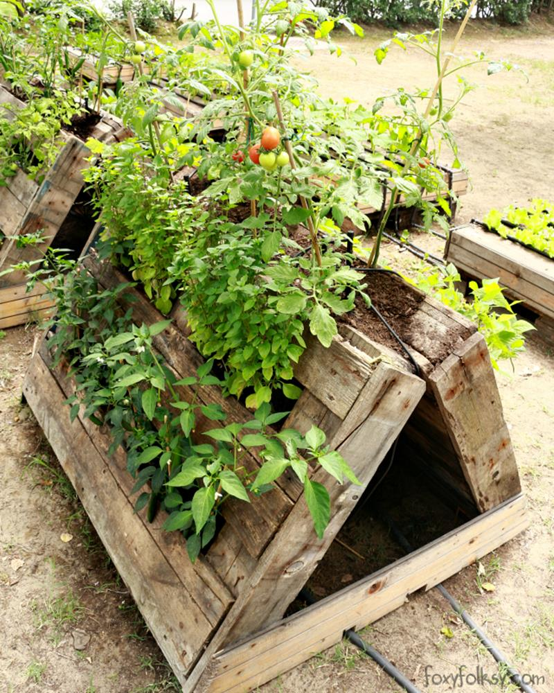 Easy Vegetable Gardening With Pallets 27