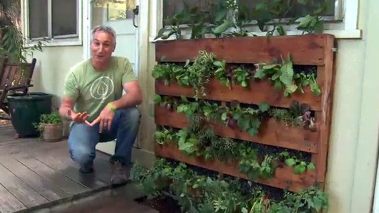 Easy Vegetable Gardening With Pallets 30