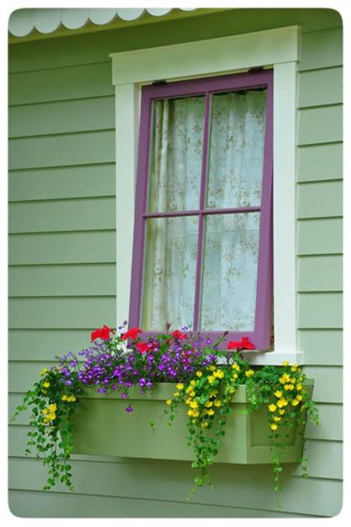 Best Beautiful Cascading Flowers For Window Boxes Ideas 8
