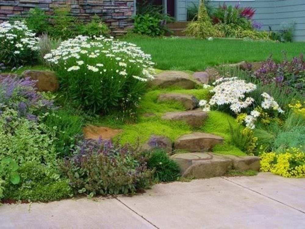 Perfect Landscaping Ideas for Small Yards 24
