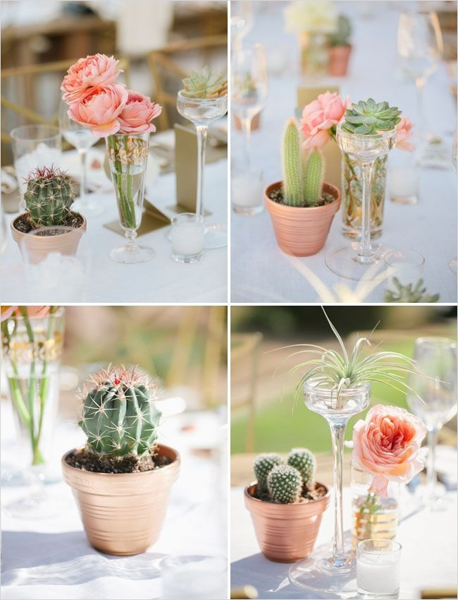 43 Beautiful Cactus Centerpiece Ideas 41 Best 25 Cactus Wedding Ideas On Pinterest 6