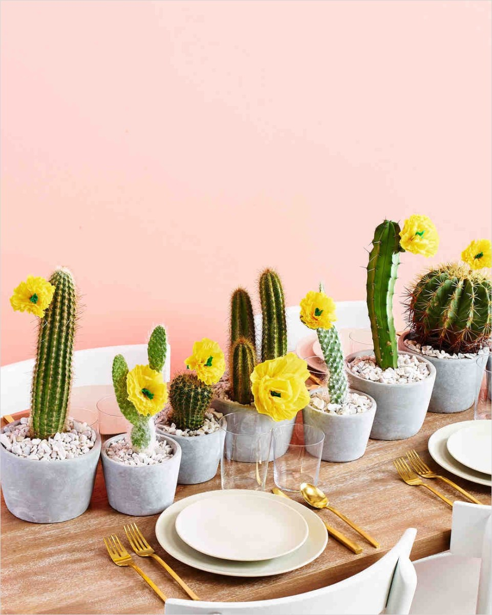 43 Beautiful Cactus Centerpiece Ideas 36 Trending now Cactus Wedding Ideas 9