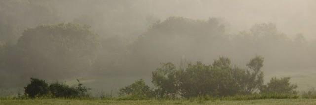 cropped-prairie-fog.jpg