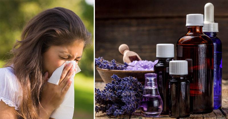 Top 5 Essential Oils That Can Soothe Allergies