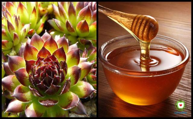 A simple natural remedy that will help you destroy fibroids and cysts in your body!