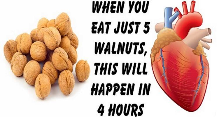When You Eat Just 5 Walnuts, This Will Happen In 4 Hours - GoNutriPro