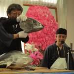 茨城の特別養護老人ホーム様にてマグロ解体ショー