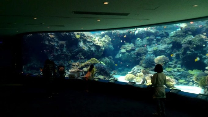 First to coral reef aquarium in Churaumi Aquarium