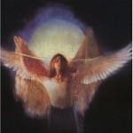Owl In Love Patrice Kindl Book Cover