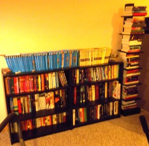 Work Out Room Book Shelves