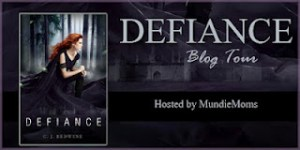 Defiance Banner For Mundie Moms Tour