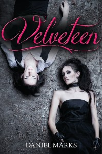 Velveteen by Daniel Marks | Good Books And Good Wine